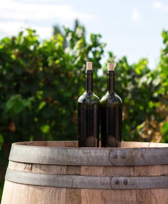 Почему вино выдерживают в дубовых бочках