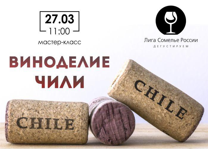 Мастер класс «Виноделие Чили»