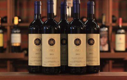 Благородное итальянское вино «Сассикайя»